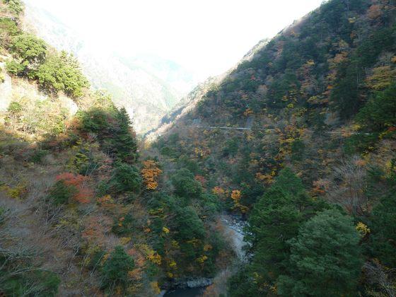 飛龍橋から眺める美しい寸又峡の紅葉