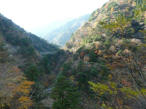 遊歩道から眺める寸又峡の紅葉と飛龍橋