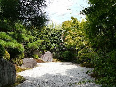 150920arasiyama (3)