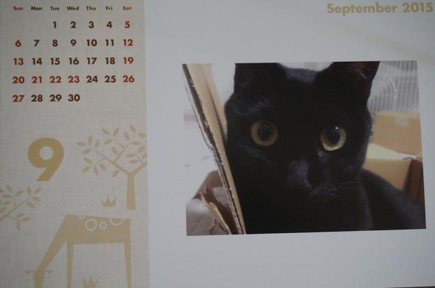 2015.9のカレンダー