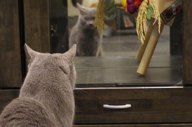 鏡に映る自分