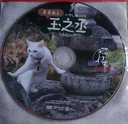 玉之丞特典DVD