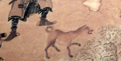 イランカラプテ14