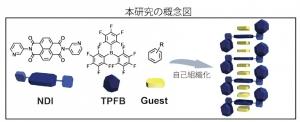 kyusyu-univ_hisaeda_organic molecule_image1