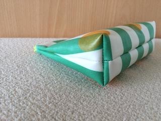 plain pouch2