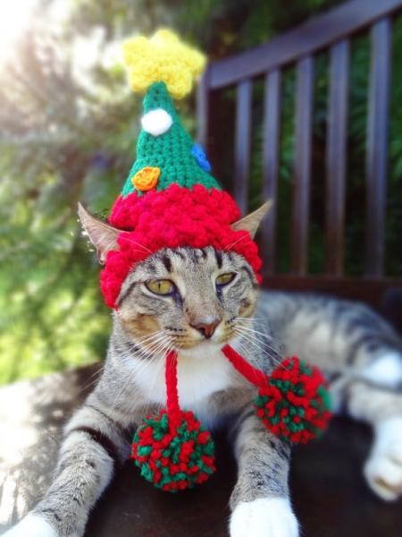 ネコ_帽子_etsy_クリスマス