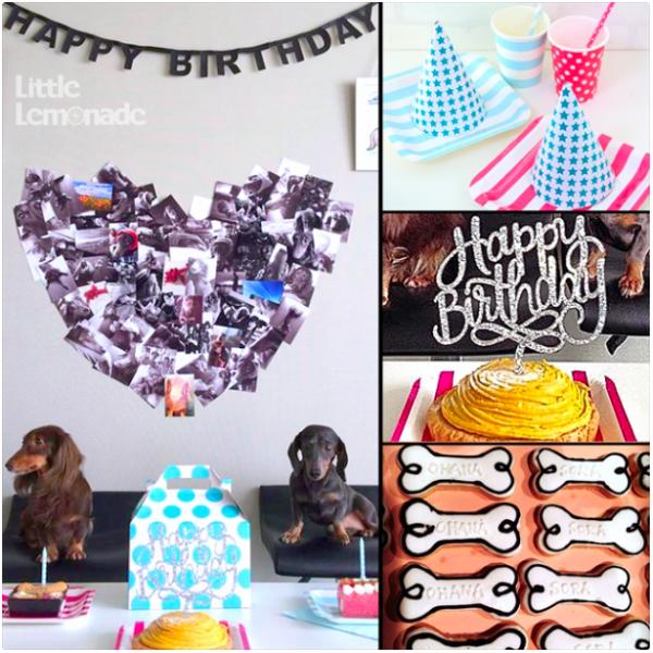 犬のお誕生日パーティー