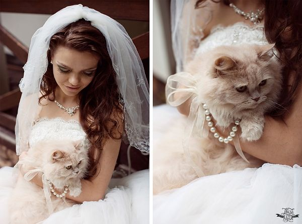 bride-wedding-shoot-with-cat_20150826122641b16.jpg