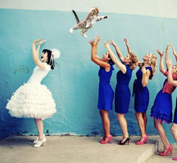 bridesthrowingcats.png