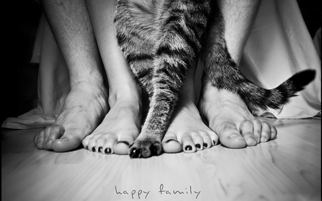 happy-family-95420.jpg