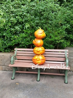 Halloween2015_011.jpg