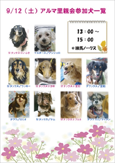 9.12参加犬