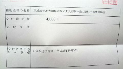 2015 10 16 ミケ2
