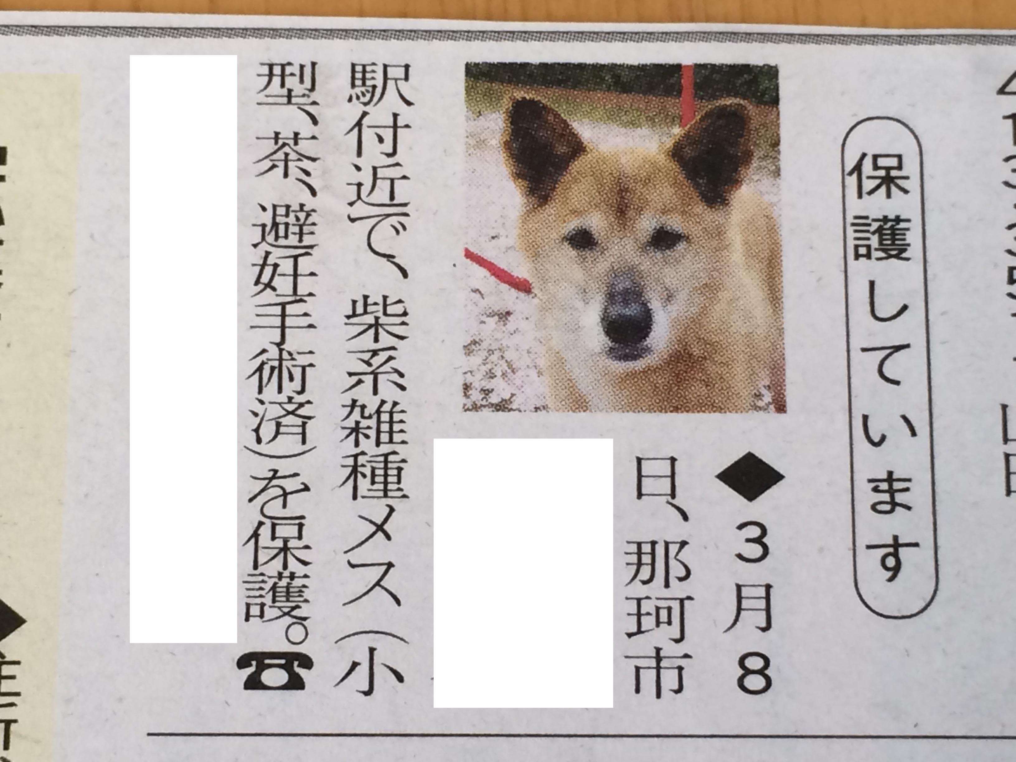 さち新聞掲載写真