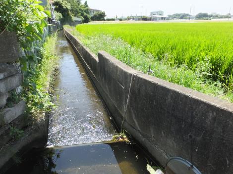 境川上高倉堰用水路