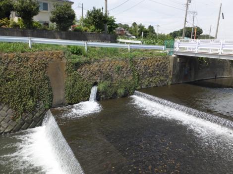 引地川右岸に放流される若宮堰用水