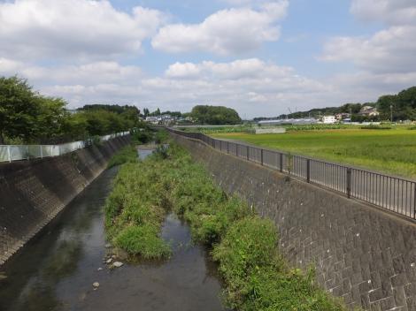 新折越橋より和泉川上流を望む