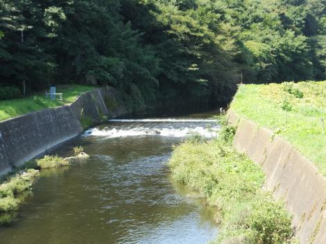 中村橋より引地川上流を望む・中村堰跡
