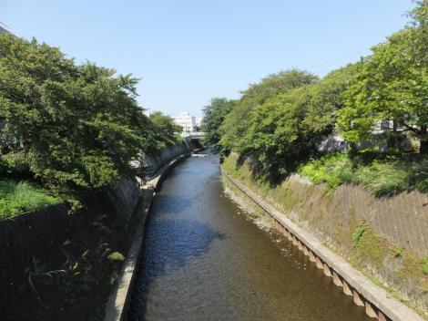 柳橋より引地川上流を望む