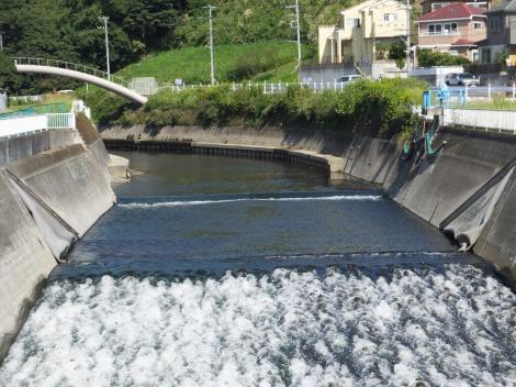 東山田橋より引地川上流を望む