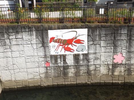 引地川・山下橋のザリガニ