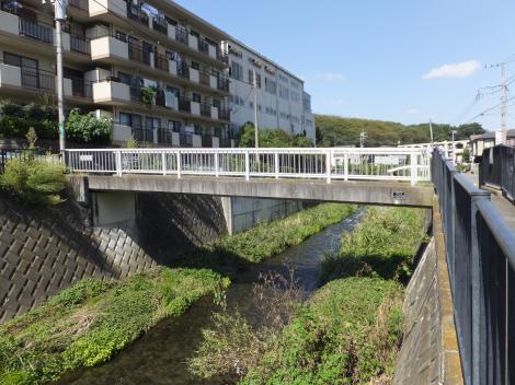 引地川・福田1号橋
