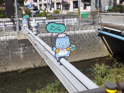引地川・河童の水管橋
