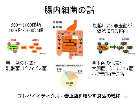 腸内細菌2