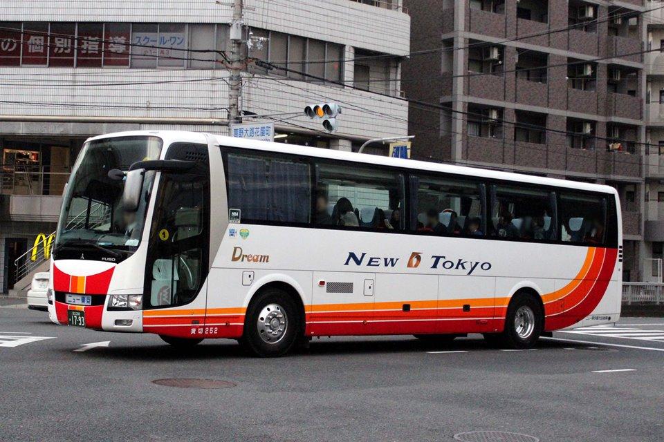 ニュー東京観光自動車 252
