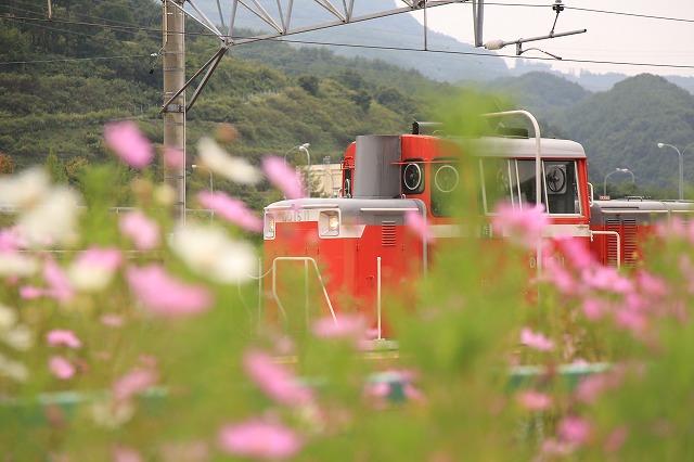 s-IMG_7702.jpg