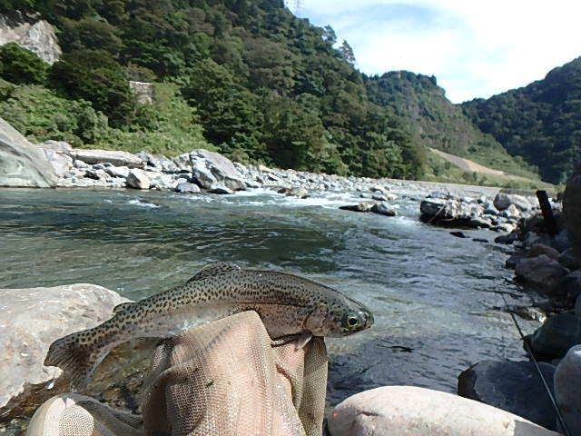 2015最後の渓流釣り19