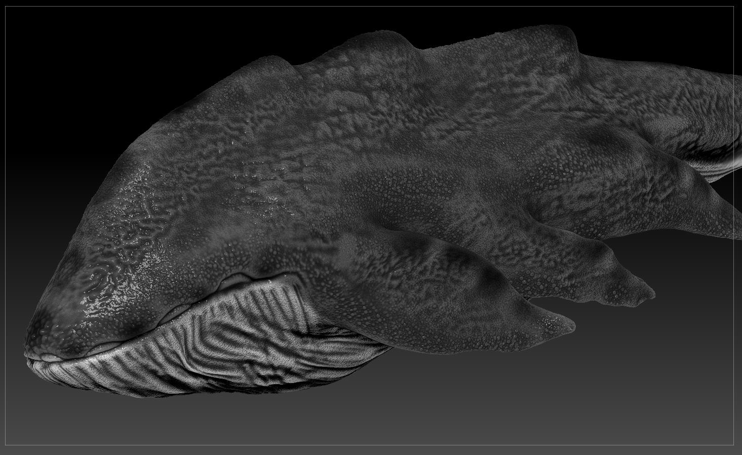 クジラ04
