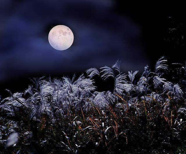 fススキと満月
