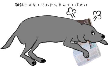 雑誌に載る犬
