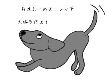 ストレッチする犬