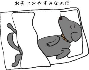 ふとんで寝る犬