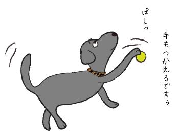 ボールを叩く犬
