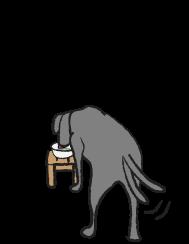 ミルクを飲む犬