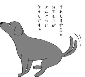 おすわりする犬