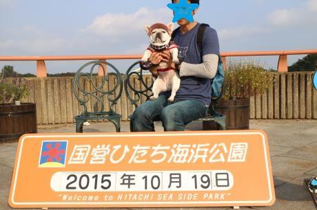 IMG_7636_convert_20151019232827.jpg