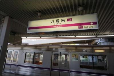 八尾南270510_07