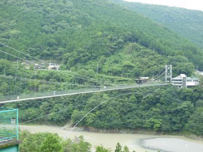 谷瀬の吊り橋2