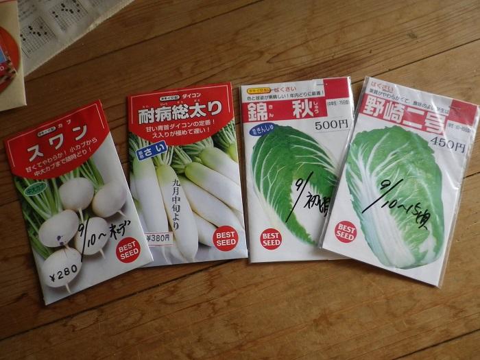 白菜等の種15_08_22