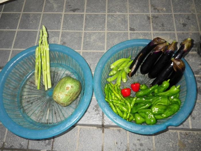 収穫15_09_08