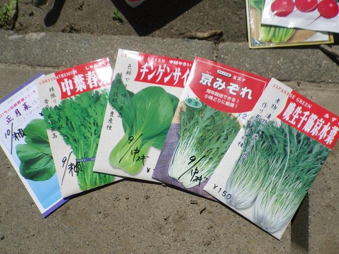 買い物2_15_09_12
