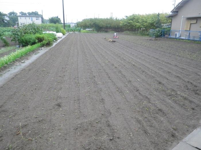 隣の畑1_15_09_25