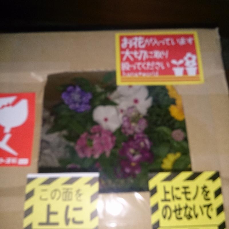 15-09-14-16-56-12-109_photo (800x800)