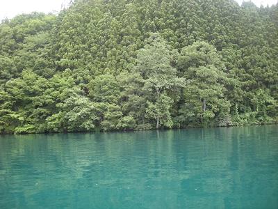 湖面に映る木々
