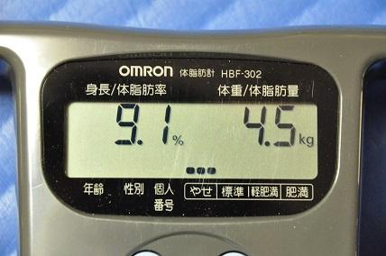 1012体脂肪率