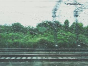 休日の雨か・・・